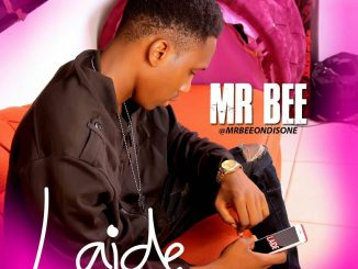 Mr Bee - Laide