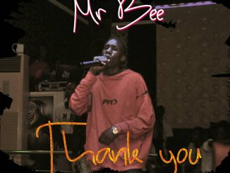 Mr Bee - Thank You