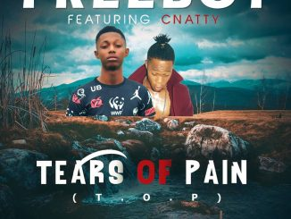 Freeboy - Tears Of Pain Feat. C Natty