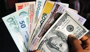naira-and-dollar-notes-300x173